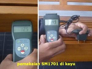 SM1701JS / MC7825PS